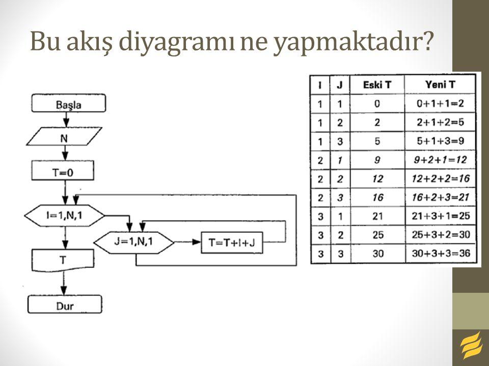 Bu akış diyagramı ne yapmaktadır?