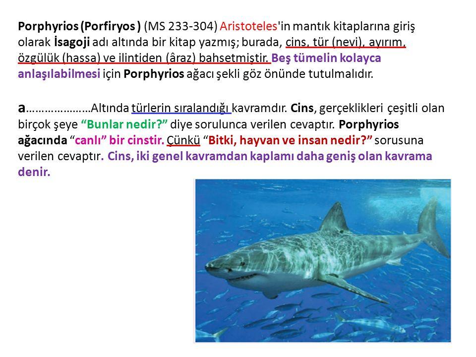 Porphyrios (Porfiryos ) (MS 233-304) Aristoteles'in mantık kitaplarına giriş olarak İsagoji adı altında bir kitap yazmış; burada, cins, tür (nevi), ay