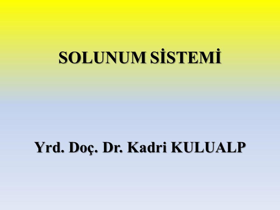 SOLUNUM SİSTEMİ Yrd. Doç. Dr. Kadri KULUALP