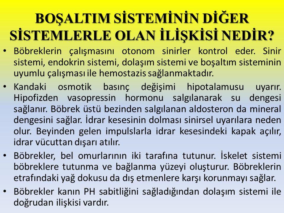 NEFROLİTİAZİS'İN TEDAVİSİ HAFİF BELİRTİLERDE: Yapılan tetkiklerle bulunan taşın çapı 4 mm.