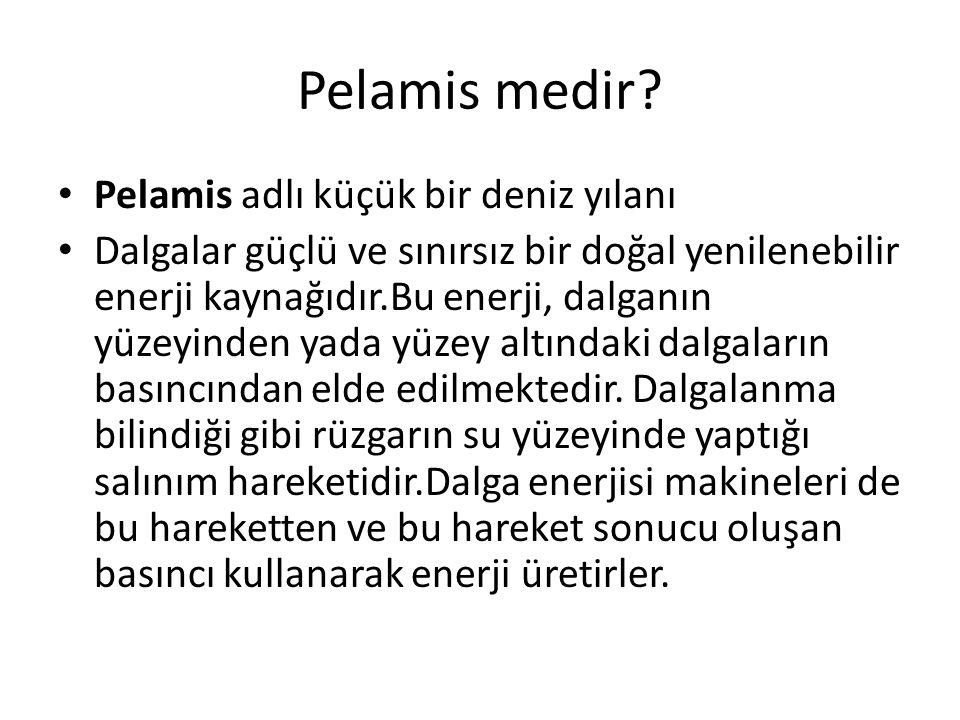 Pelamis medir? Pelamis adlı küçük bir deniz yılanı Dalgalar güçlü ve sınırsız bir doğal yenilenebilir enerji kaynağıdır.Bu enerji, dalganın yüzeyinden