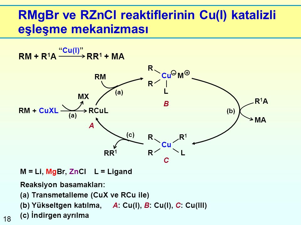 18 R R RMgBr ve RZnCl reaktiflerinin Cu(I) katalizli eşleşme mekanizması M = Li, MgBr, ZnClL = Ligand Reaksiyon basamakları: (a) Transmetalleme (CuX v