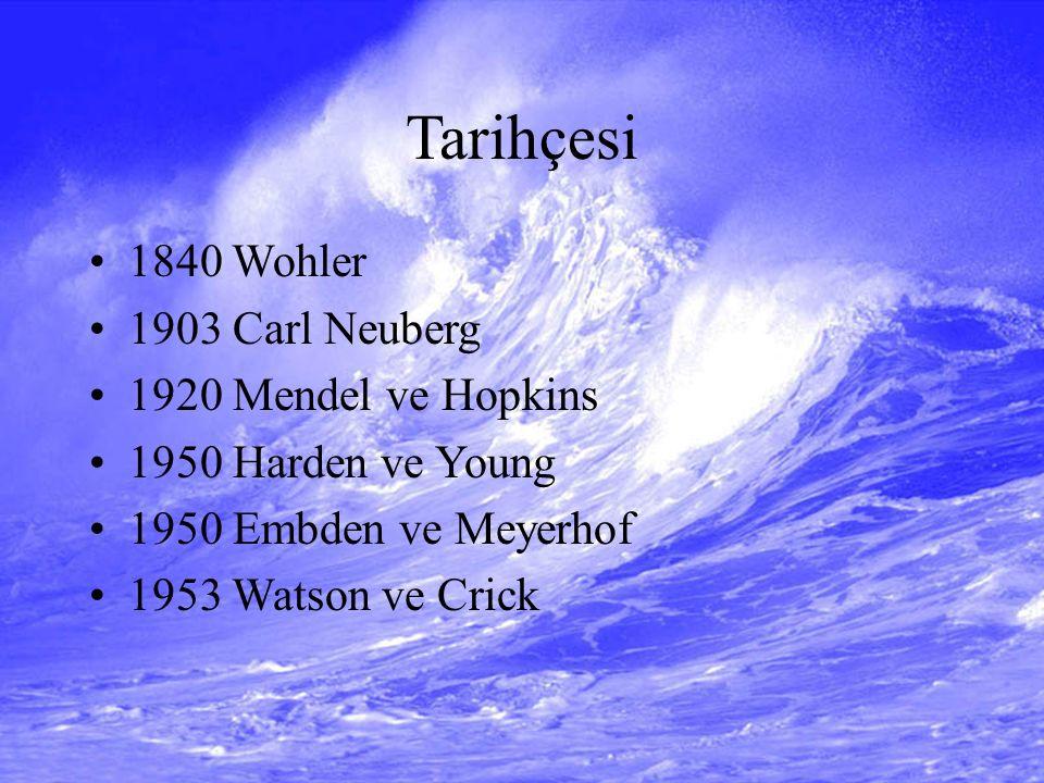 Tarihçesi 1840 Wohler 1903 Carl Neuberg 1920 Mendel ve Hopkins 1950 Harden ve Young 1950 Embden ve Meyerhof 1953 Watson ve Crick