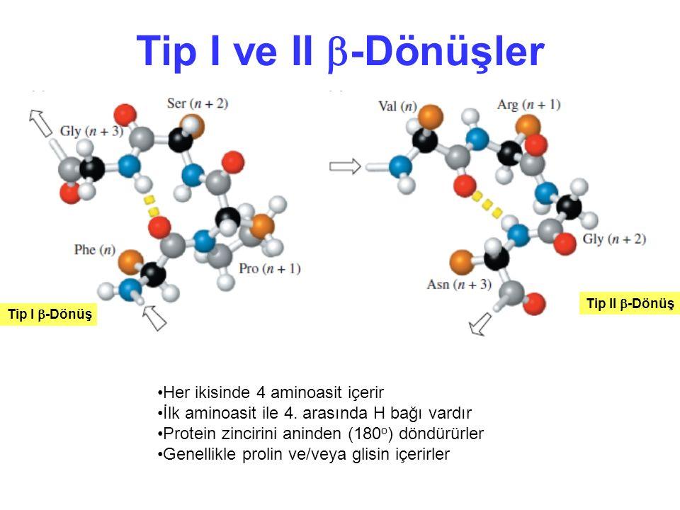 Tip I ve II  -Dönüşler Tip I  -Dönüş Tip II  -Dönüş Her ikisinde 4 aminoasit içerir İlk aminoasit ile 4. arasında H bağı vardır Protein zincirini a