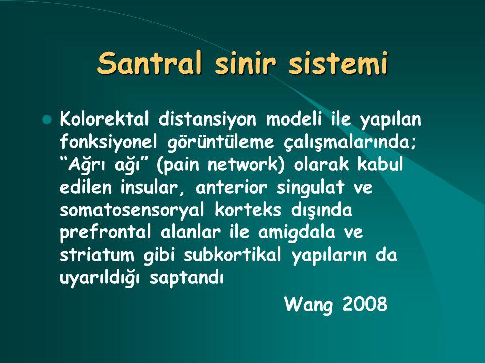 """Santral sinir sistemi Kolorektal distansiyon modeli ile yapılan fonksiyonel görüntüleme çalışmalarında; ''Ağrı ağı"""" (pain network) olarak kabul edilen"""