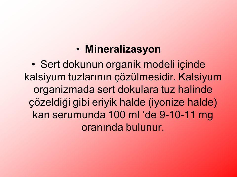 Mineralizasyon Sert dokunun organik modeli içinde kalsiyum tuzlarının çözülmesidir.