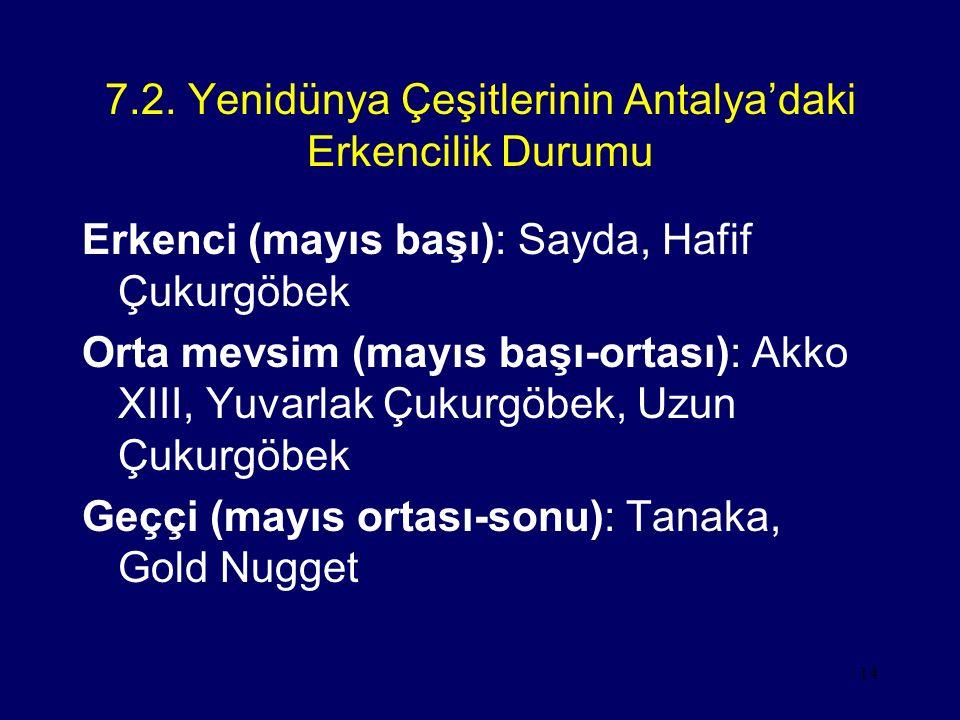 14 7.2. Yenidünya Çeşitlerinin Antalya'daki Erkencilik Durumu Erkenci (mayıs başı): Sayda, Hafif Çukurgöbek Orta mevsim (mayıs başı-ortası): Akko XIII