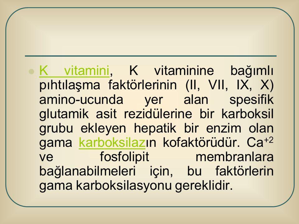 K vitamini, K vitaminine bağımlı pıhtılaşma faktörlerinin (II, VII, IX, X) amino-ucunda yer alan spesifik glutamik asit rezidülerine bir karboksil gru