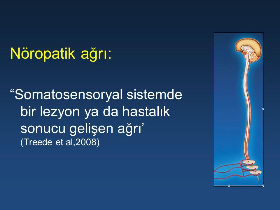 """Nöropatik ağrı: """"Somatosensoryal sistemde bir lezyon ya da hastalık sonucu gelişen ağrı' (Treede et al,2008)"""