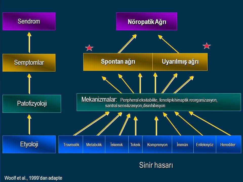 Nöropatik Ağrı Sendrom Semptomlar Patofizyoloji Etyoloji Mekanizmalar: Peripheral eksitabilite, fenotipik/sinaptik reorganizasyon, santral sensitizasy