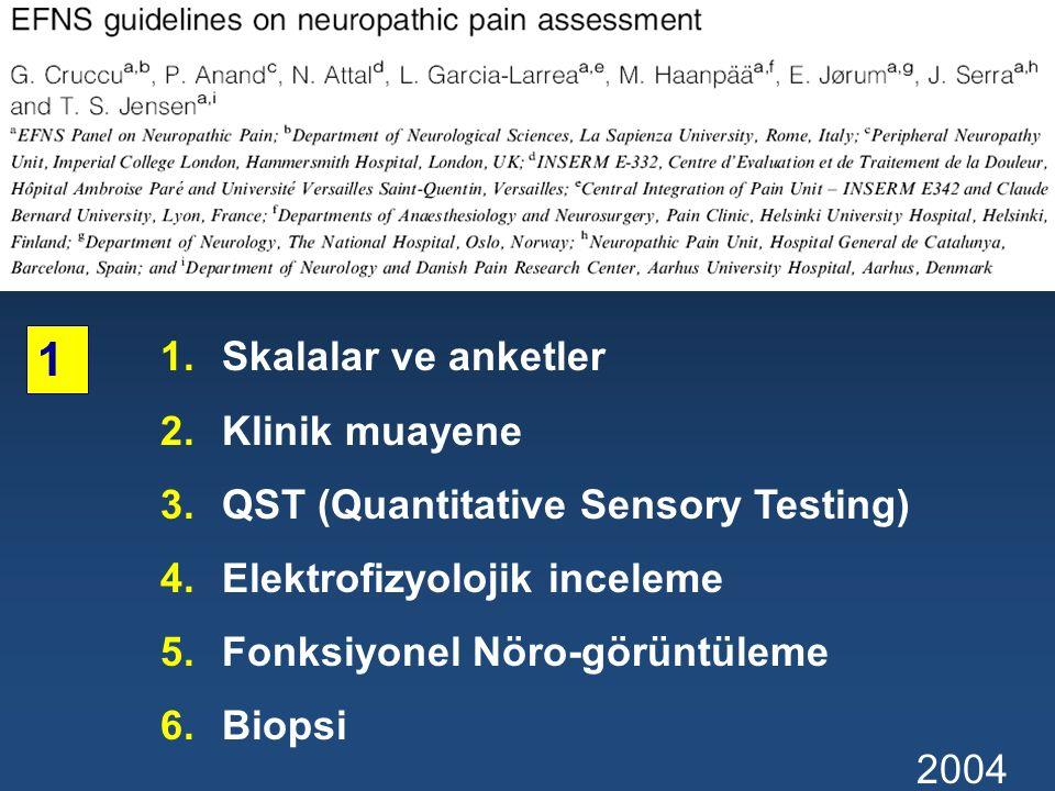 1.Skalalar ve anketler 2.Klinik muayene 3.QST (Quantitative Sensory Testing) 4.Elektrofizyolojik inceleme 5.Fonksiyonel Nöro-görüntüleme 6.Biopsi 2004