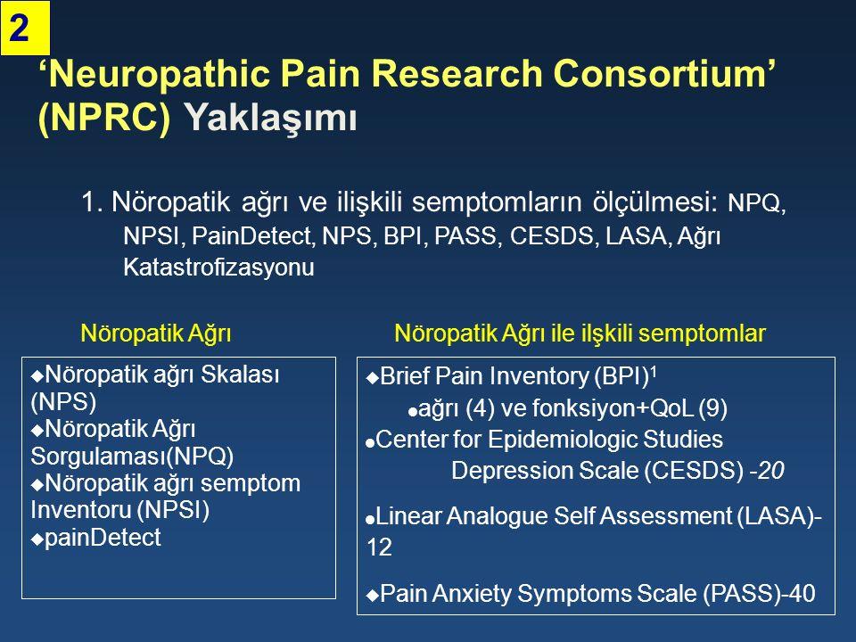 1. Nöropatik ağrı ve ilişkili semptomların ölçülmesi: NPQ, NPSI, PainDetect, NPS, BPI, PASS, CESDS, LASA, Ağrı Katastrofizasyonu 'Neuropathic Pain Res