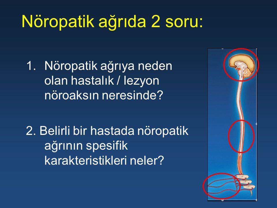 Nöropatik ağrıda 2 soru: 1.Nöropatik ağrıya neden olan hastalık / lezyon nöroaksın neresinde? 2. Belirli bir hastada nöropatik ağrının spesifik karakt