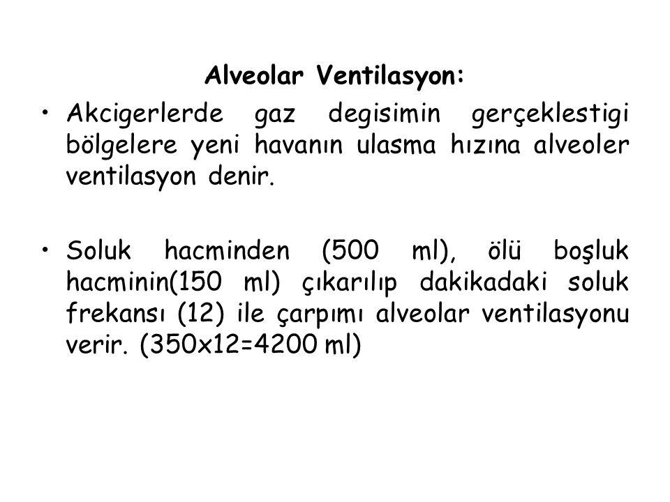 Alveolar Ventilasyon: Akcigerlerde gaz degisimin gerçeklestigi bölgelere yeni havanın ulasma hızına alveoler ventilasyon denir. Soluk hacminden (500 m