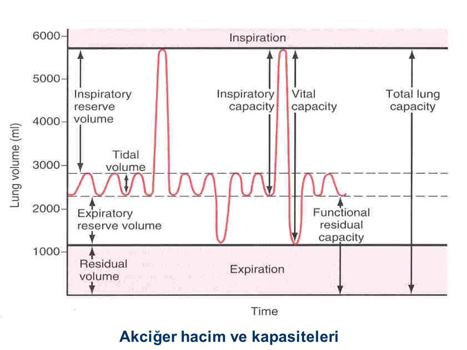 Akciğer hacim ve kapasiteleri