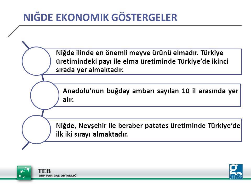 10 Niğde ilinde en önemli meyve ürünü elmadır. Türkiye üretimindeki payı ile elma üretiminde Türkiye'de ikinci sırada yer almaktadır. Anadolu'nun buğd