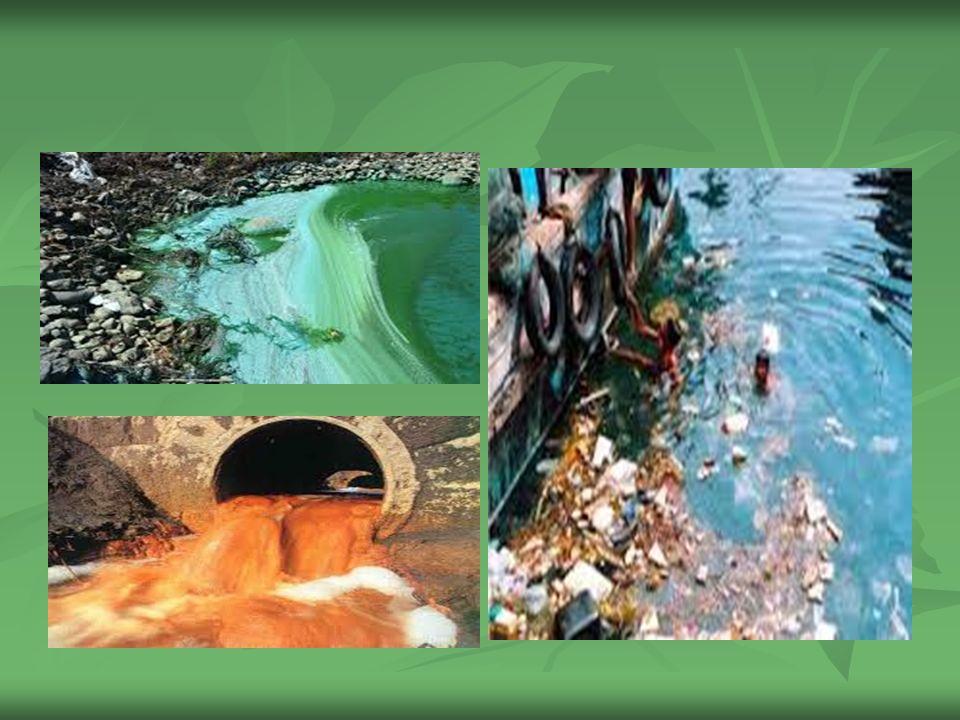 Su Kirlenmesinin Çevreye Etkileri Su Kirlenmesinin Çevreye Etkileri Su kirlenmesinin çevreye etkilerini, insan sağlığına olan etkileri ve ekonomik etkileri olarak 2 grupta toplayabiliriz.