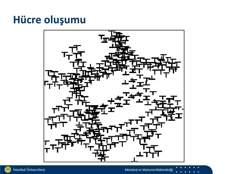 Materials and Chemistry İstanbul Üniversitesi Metalurji ve Malzeme Mühendisliği İstanbul Üniversitesi Metalurji ve Malzeme Mühendisliği Hücre oluşumu