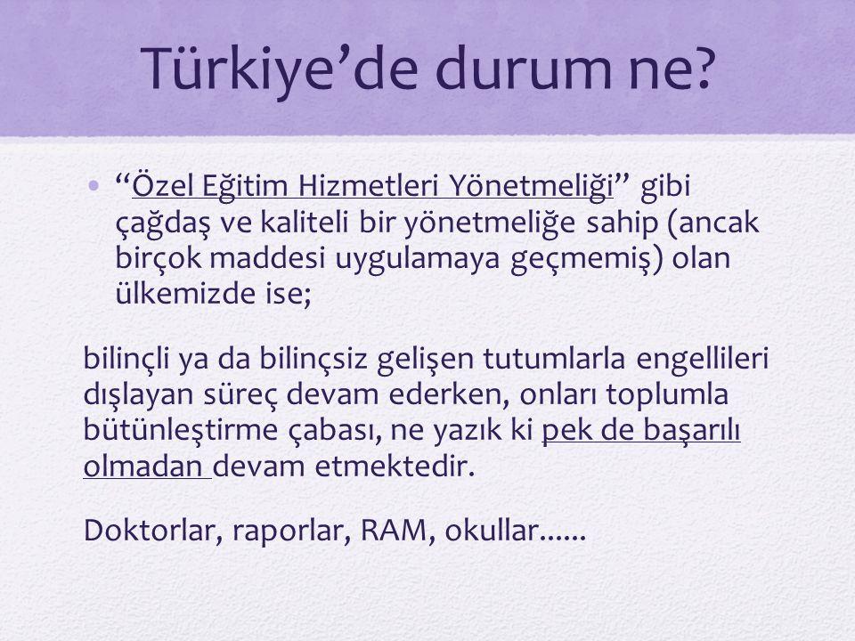 """Türkiye'de durum ne? """"Özel Eğitim Hizmetleri Yönetmeliği"""" gibi çağdaş ve kaliteli bir yönetmeliğe sahip (ancak birçok maddesi uygulamaya geçmemiş) ola"""