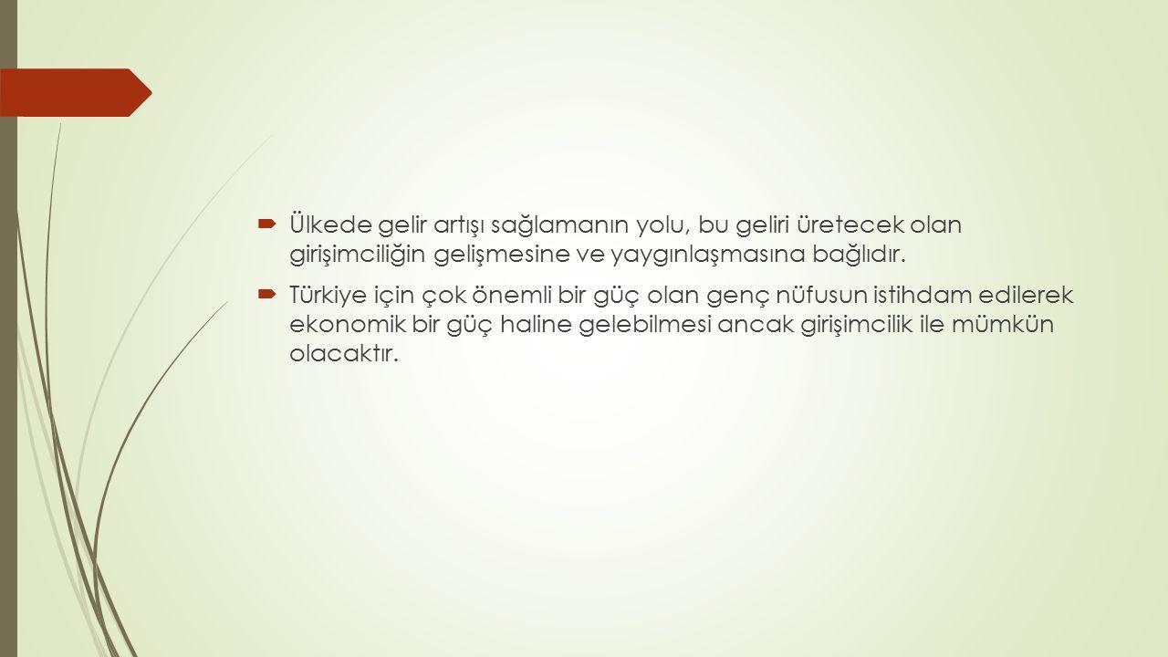  Ülkede gelir artışı sağlamanın yolu, bu geliri üretecek olan girişimciliğin gelişmesine ve yaygınlaşmasına bağlıdır.  Türkiye için çok önemli bir g