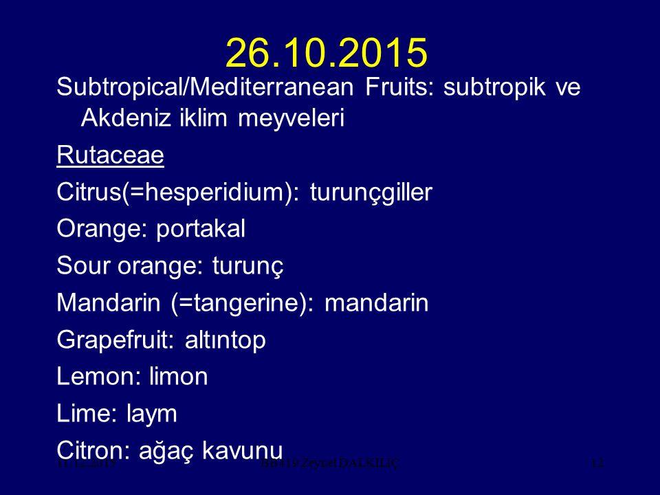11.12.201512 26.10.2015 Subtropical/Mediterranean Fruits: subtropik ve Akdeniz iklim meyveleri Rutaceae Citrus(=hesperidium): turunçgiller Orange: por