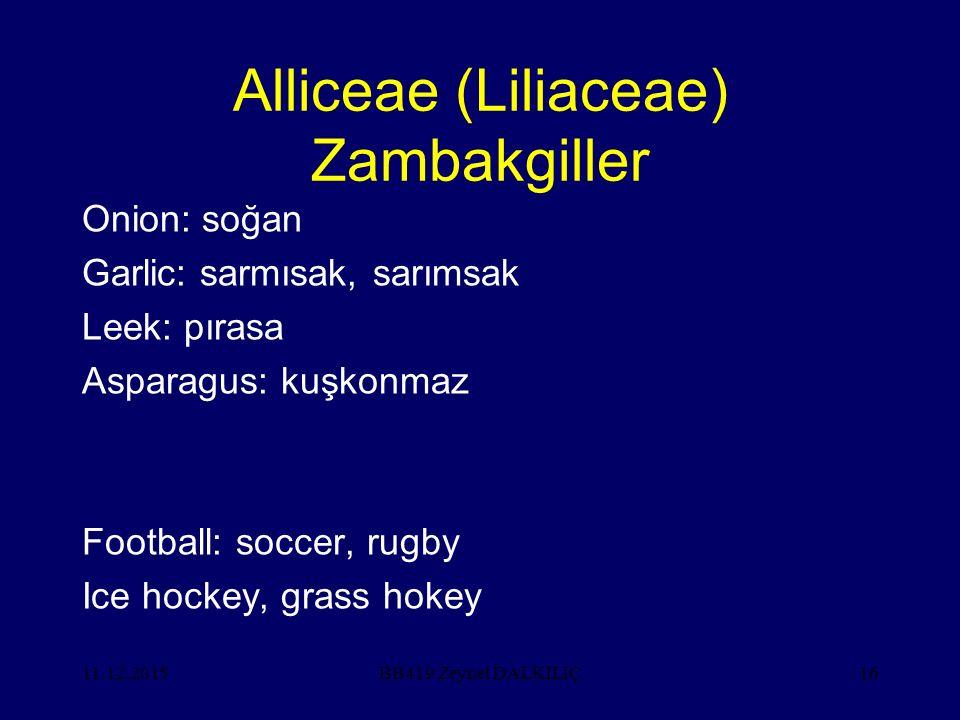 11.12.201516 Alliceae (Liliaceae) Zambakgiller Onion: soğan Garlic: sarmısak, sarımsak Leek: pırasa Asparagus: kuşkonmaz Football: soccer, rugby Ice h