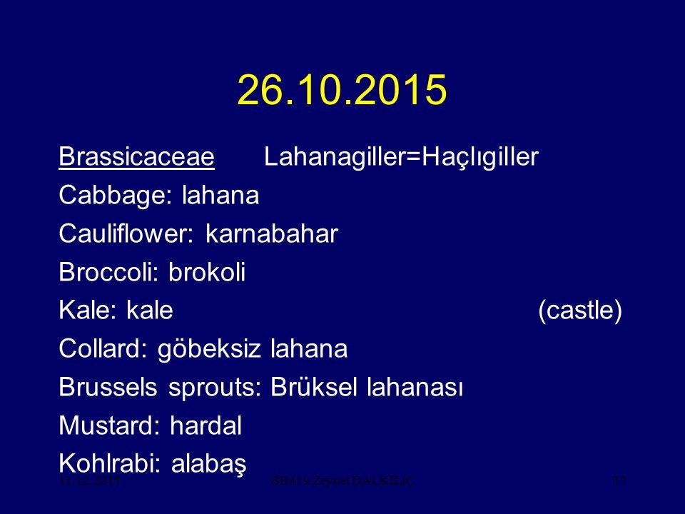 11.12.201517 26.10.2015 BrassicaceaeLahanagiller=Haçlıgiller Cabbage: lahana Cauliflower: karnabahar Broccoli: brokoli Kale: kale(castle) Collard: göb