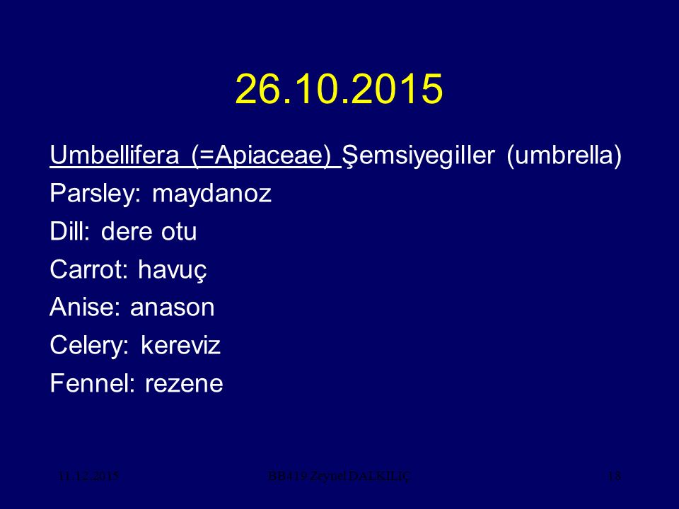 11.12.201518 26.10.2015 Umbellifera (=Apiaceae) Şemsiyegiller (umbrella) Parsley: maydanoz Dill: dere otu Carrot: havuç Anise: anason Celery: kereviz Fennel: rezene BB419 Zeynel DALKILIÇ