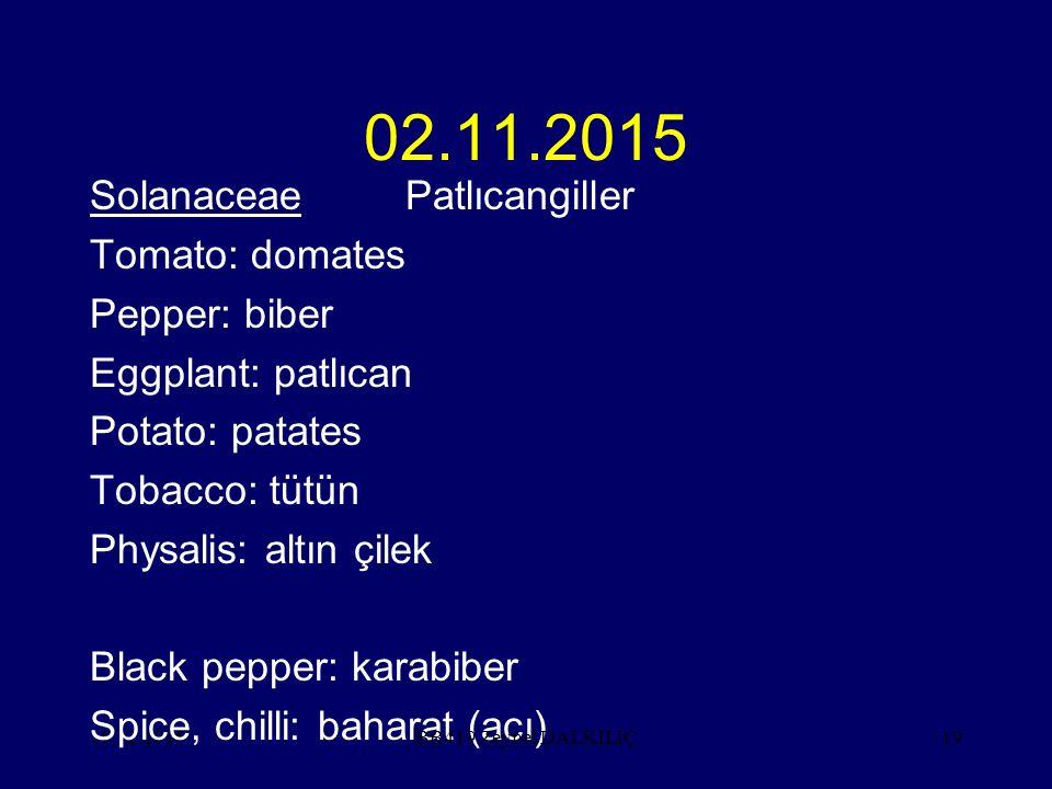 11.12.201519 02.11.2015 SolanaceaePatlıcangiller Tomato: domates Pepper: biber Eggplant: patlıcan Potato: patates Tobacco: tütün Physalis: altın çilek