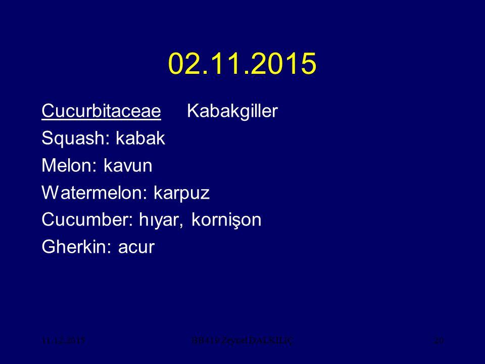 11.12.201520 02.11.2015 CucurbitaceaeKabakgiller Squash: kabak Melon: kavun Watermelon: karpuz Cucumber: hıyar, kornişon Gherkin: acur BB419 Zeynel DA