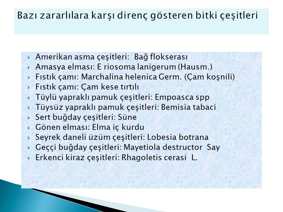  Amerikan asma çeşitleri: Bağ flokserası  Amasya elması: E riosoma lanigerum (Hausm.)  Fıstık çamı: Marchalina helenica Germ. (Çam koşnili)  Fıstı