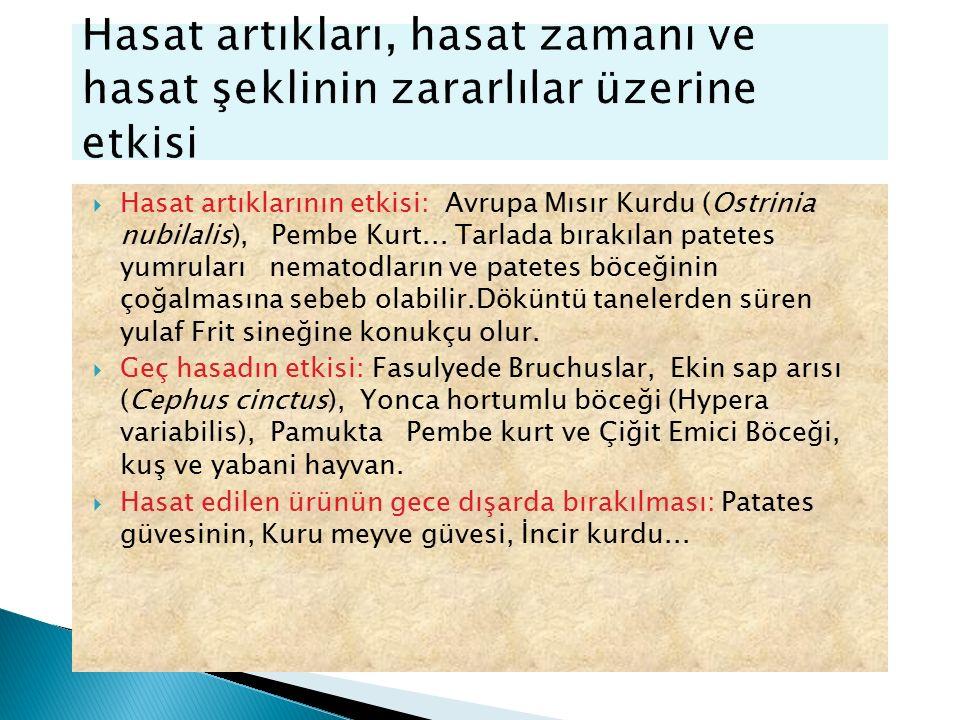  Hasat artıklarının etkisi: Avrupa Mısır Kurdu (Ostrinia nubilalis), Pembe Kurt... Tarlada bırakılan patetes yumruları nematodların ve patetes böceği