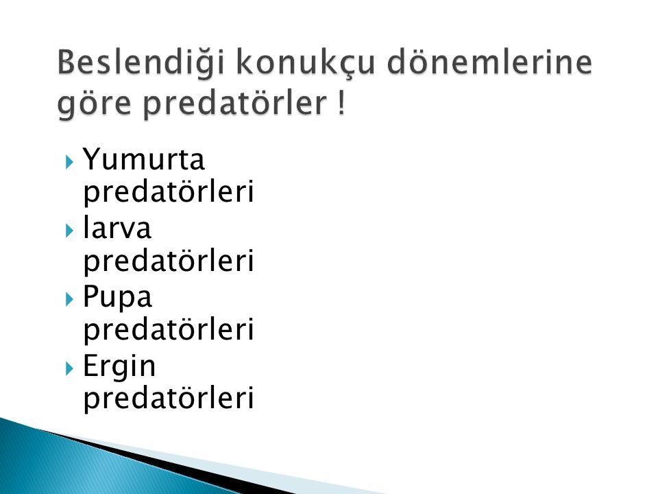  Yumurta predatörleri  larva predatörleri  Pupa predatörleri  Ergin predatörleri