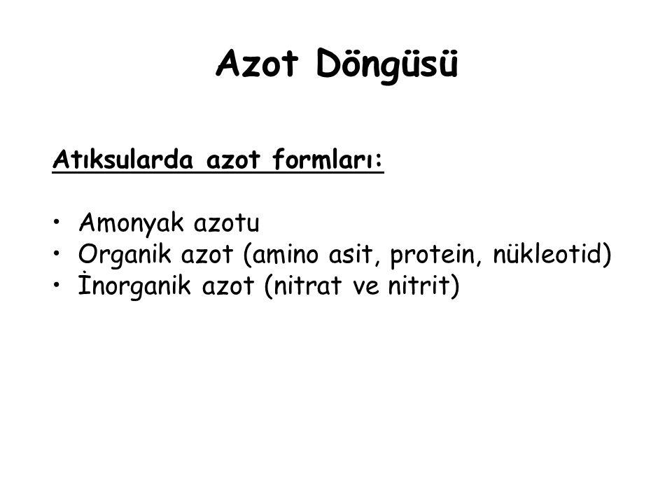 Azot Döngüsü Atıksularda azot formları: Amonyak azotu Organik azot (amino asit, protein, nükleotid) İnorganik azot (nitrat ve nitrit)