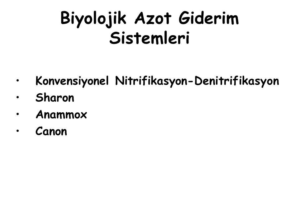 Biyolojik Azot Giderim Sistemleri Konvensiyonel Nitrifikasyon-Denitrifikasyon Sharon Anammox Canon