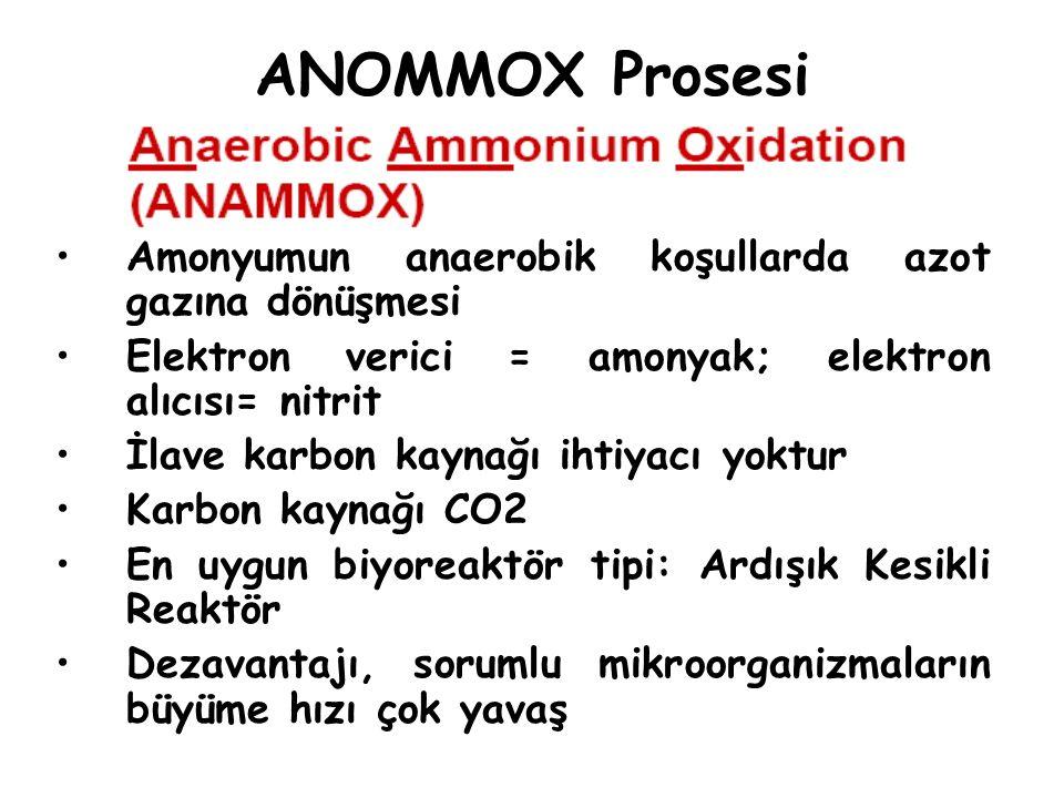 ANOMMOX Prosesi Amonyumun anaerobik koşullarda azot gazına dönüşmesi Elektron verici = amonyak; elektron alıcısı= nitrit İlave karbon kaynağı ihtiyacı
