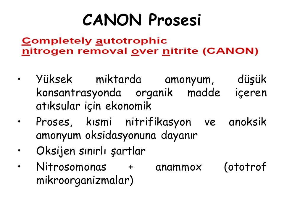CANON Prosesi Yüksek miktarda amonyum, düşük konsantrasyonda organik madde içeren atıksular için ekonomik Proses, kısmi nitrifikasyon ve anoksik amony