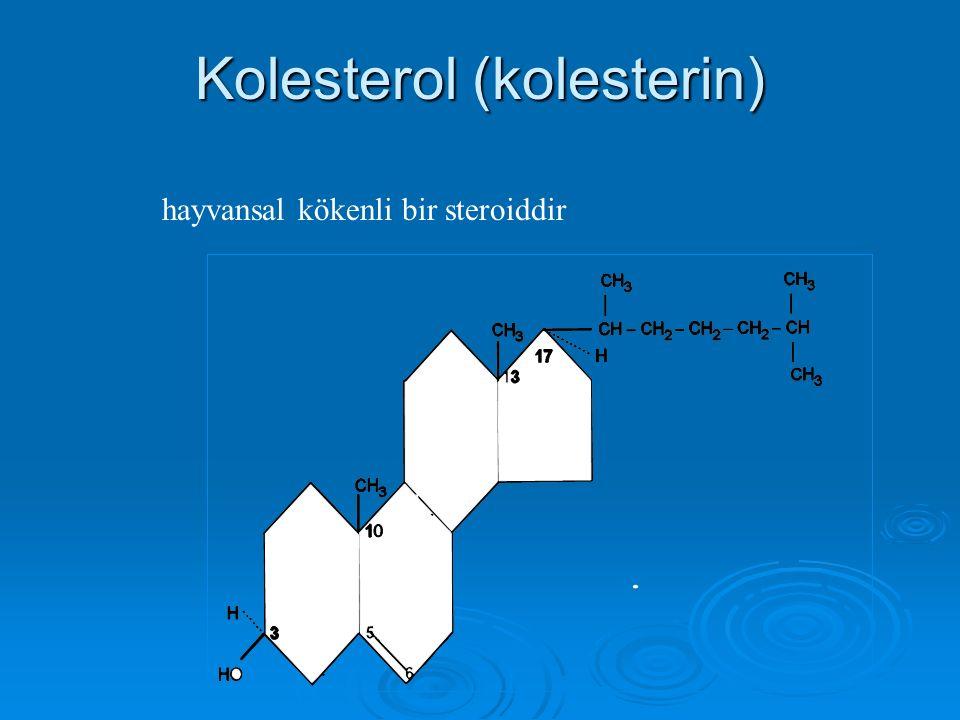 Kolesterol (kolesterin) hayvansal kökenli bir steroiddir
