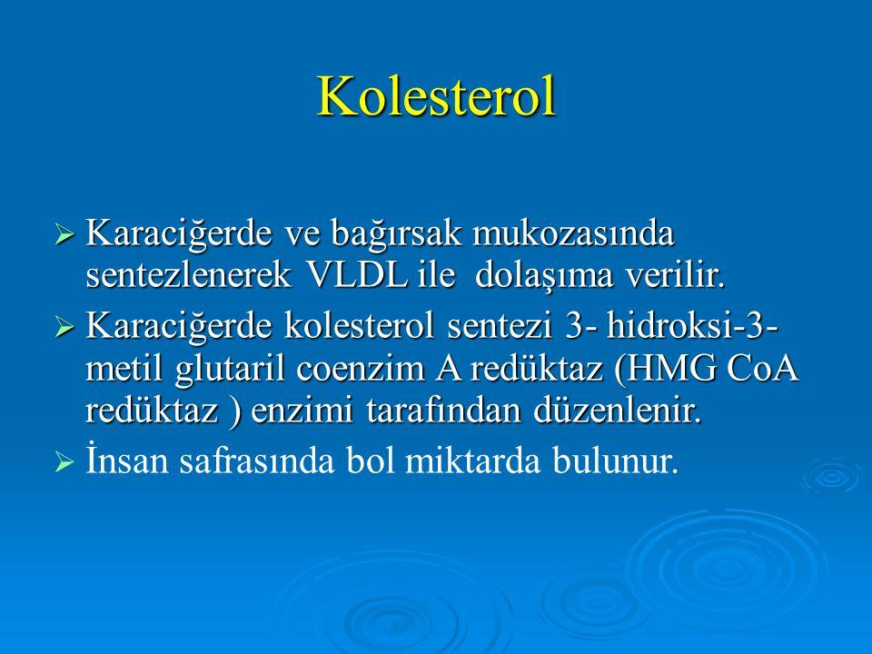 Kolesterol  Karaciğerde ve bağırsak mukozasında sentezlenerek VLDL ile dolaşıma verilir.