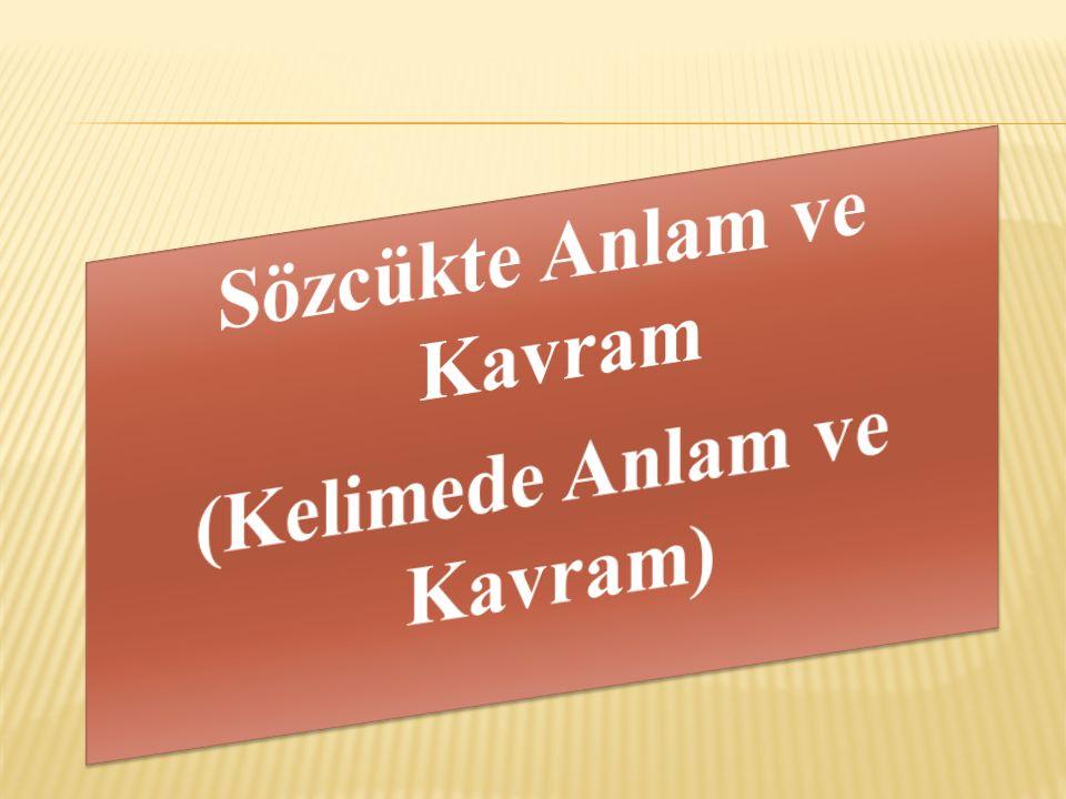 Yer, Yön, Bölge – İnsan İlişkisi:  Ankara bu konuda çok karamsar düşünüyor.