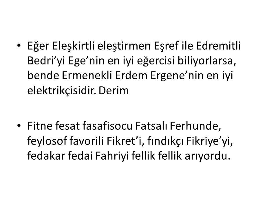 Eğer Eleşkirtli eleştirmen Eşref ile Edremitli Bedri'yi Ege'nin en iyi eğercisi biliyorlarsa, bende Ermenekli Erdem Ergene'nin en iyi elektrikçisidir.