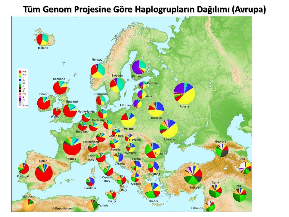 Tüm Genom Projesine Göre Haplogrupların Dağılımı (Avrupa)