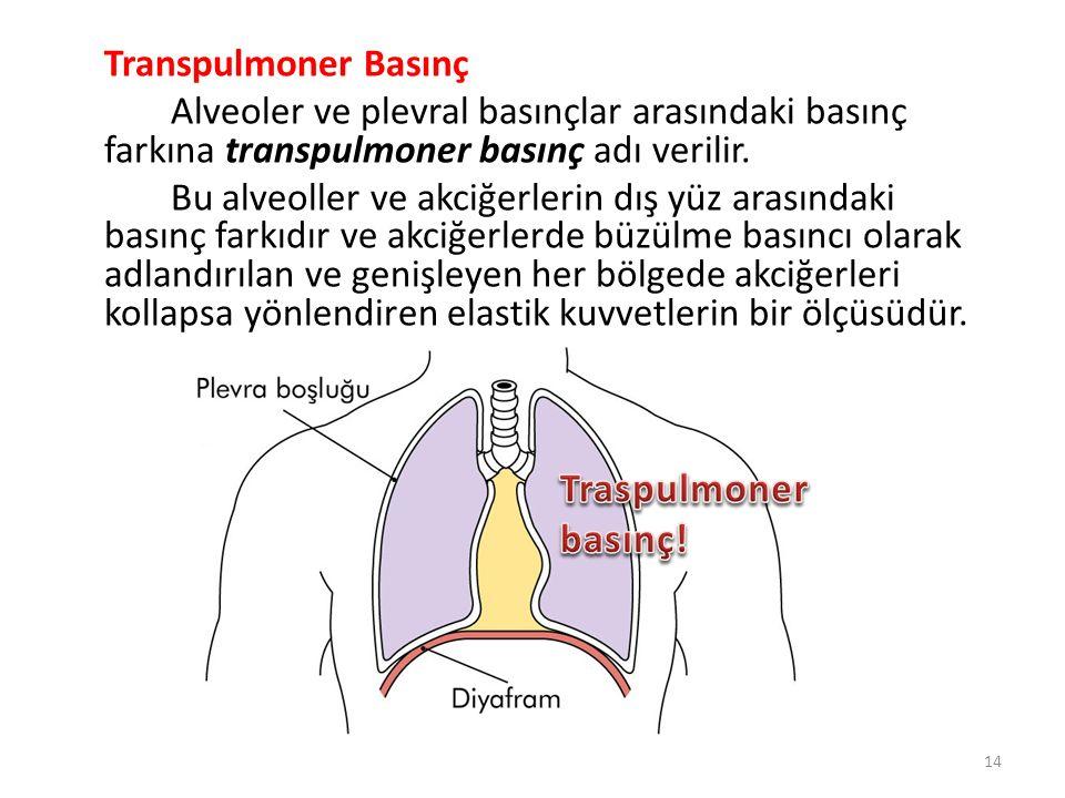 Transpulmoner Basınç Alveoler ve plevral basınçlar arasındaki basınç farkına transpulmoner basınç adı verilir.