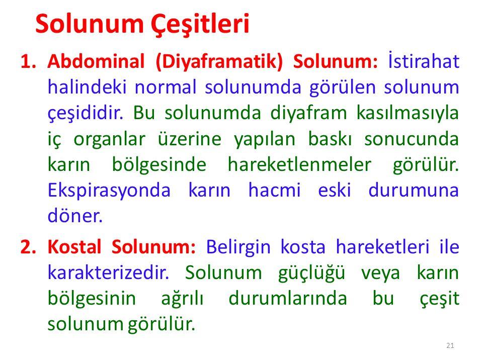 21 Solunum Çeşitleri 1.Abdominal (Diyaframatik) Solunum: İstirahat halindeki normal solunumda görülen solunum çeşididir.