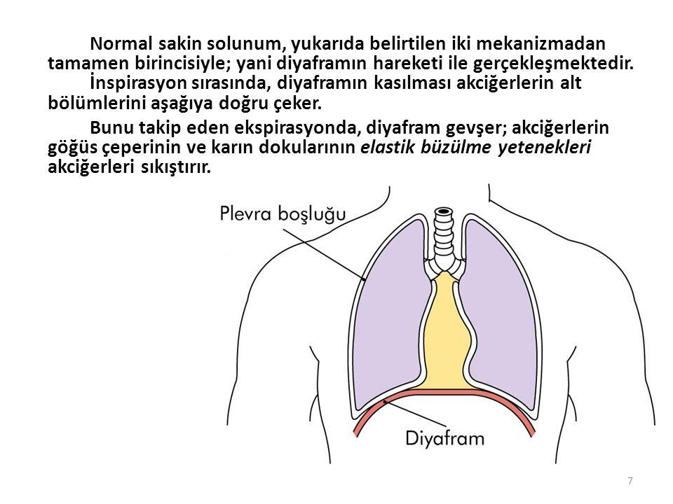 Normal sakin solunum, yukarıda belirtilen iki mekanizmadan tamamen birincisiyle; yani diyaframın hareketi ile gerçekleşmektedir.