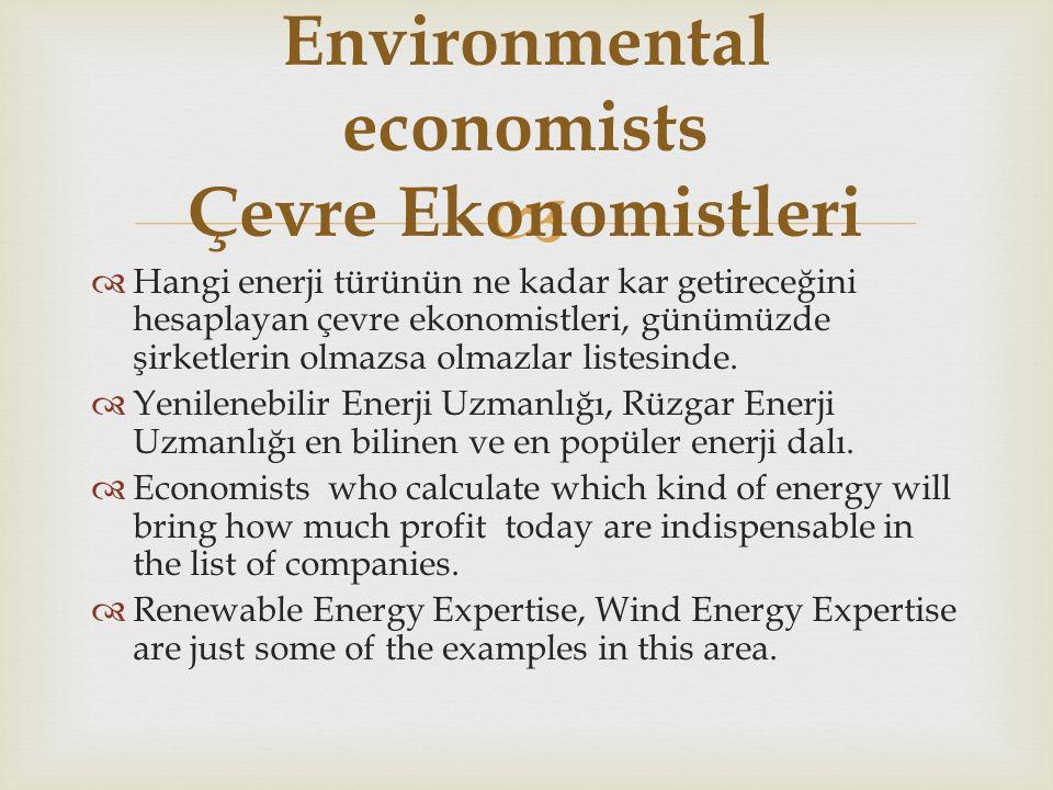   Hangi enerji türünün ne kadar kar getireceğini hesaplayan çevre ekonomistleri, günümüzde şirketlerin olmazsa olmazlar listesinde.
