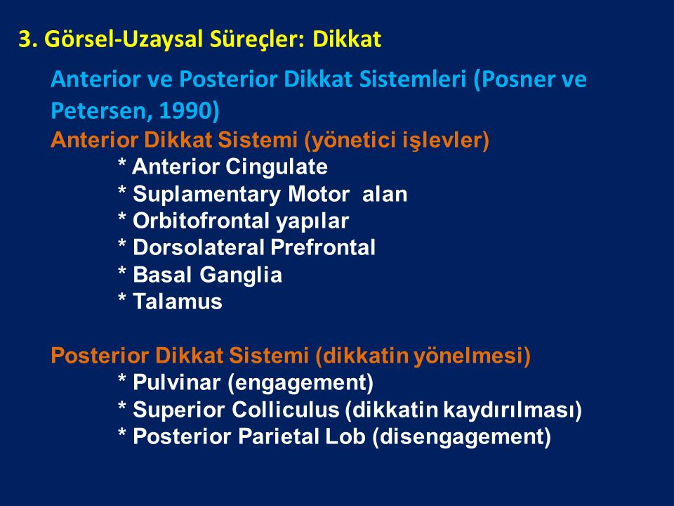 Anterior ve Posterior Dikkat Sistemleri (Posner ve Petersen, 1990) Anterior Dikkat Sistemi (yönetici işlevler) * Anterior Cingulate * Suplamentary Mot