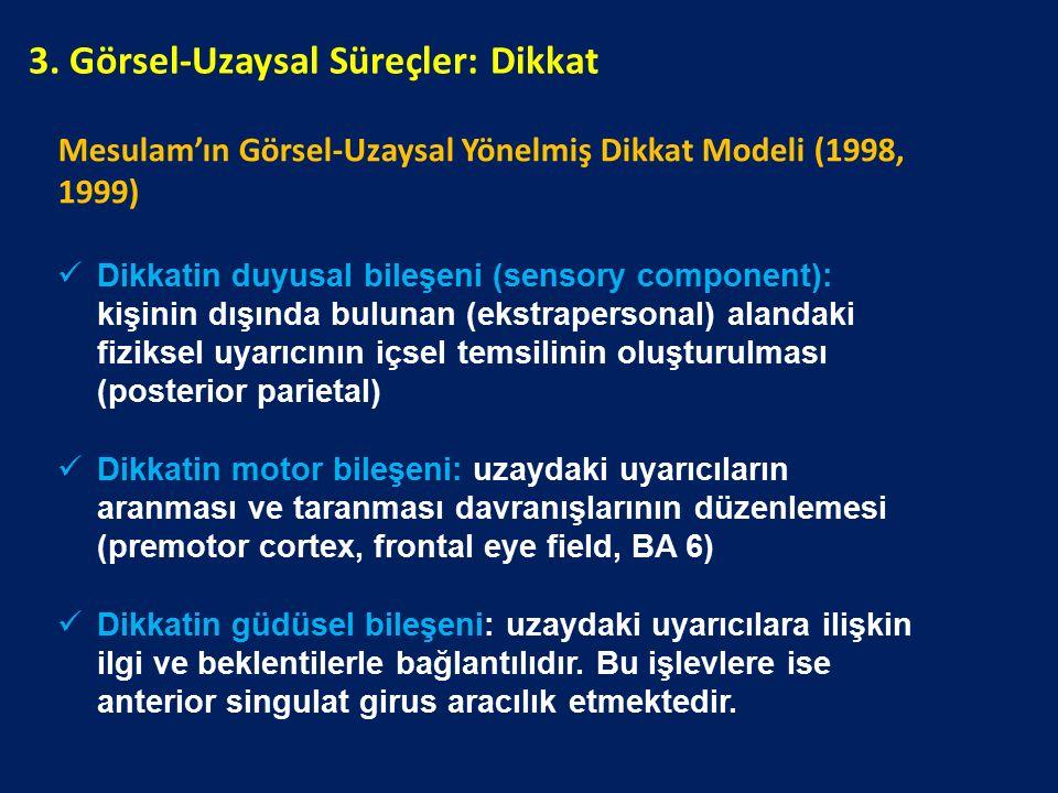 Mesulam'ın Görsel-Uzaysal Yönelmiş Dikkat Modeli (1998, 1999) Dikkatin duyusal bileşeni (sensory component): kişinin dışında bulunan (ekstrapersonal)