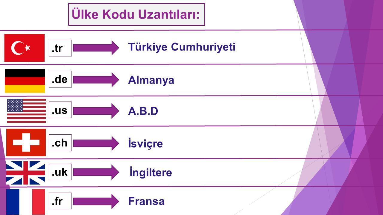 Ülke Kodu Uzantıları:.tr.de.us.ch.fr.uk Türkiye Cumhuriyeti Almanya A.B.D İsviçre İngiltere Fransa