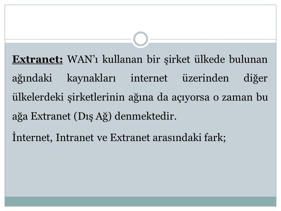 Extranet: WAN'ı kullanan bir şirket ülkede bulunan ağındaki kaynakları internet üzerinden diğer ülkelerdeki şirketlerinin ağına da açıyorsa o zaman bu ağa Extranet (Dış Ağ) denmektedir.